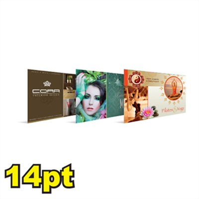 "6 1/4"" x 11"" 14pt Matte/Dull Postcards"