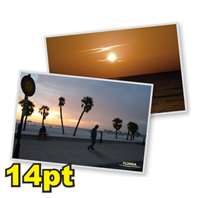 "6 1/4"" x 9"" 14pt Matte/Dull Postcards"